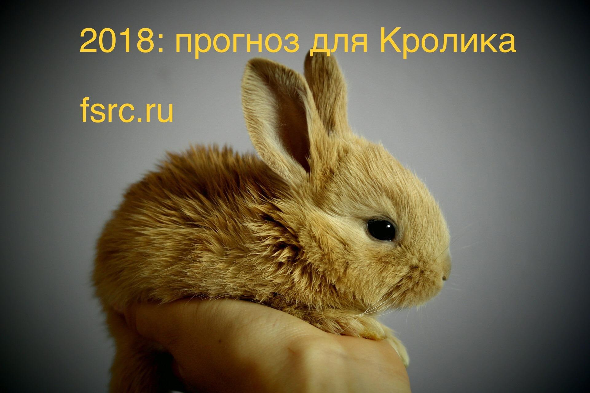 2018 Прогноз для Кролика - Fengshuimaster.ru