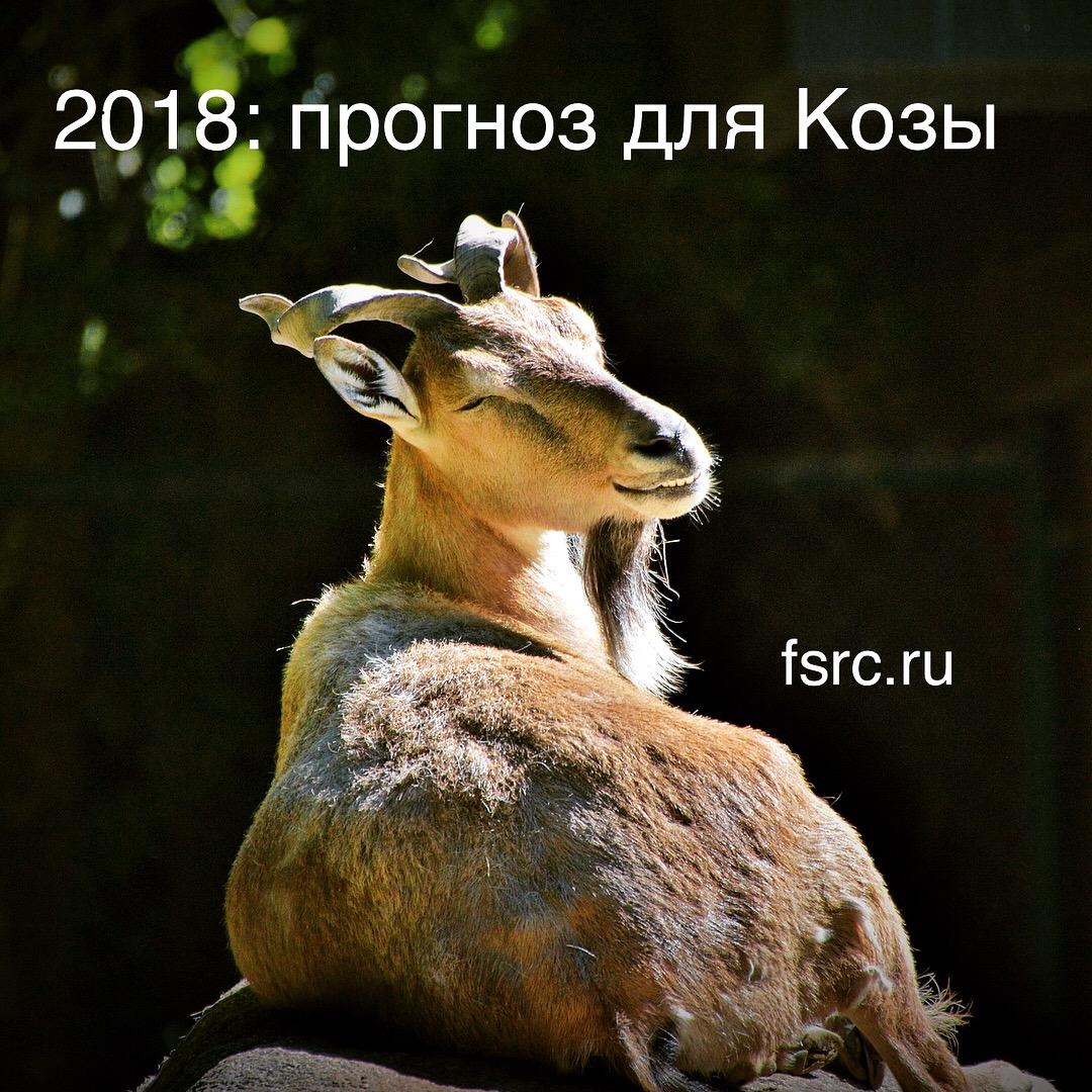2018 Прогноз для Козы - Fengshuimaster.ru