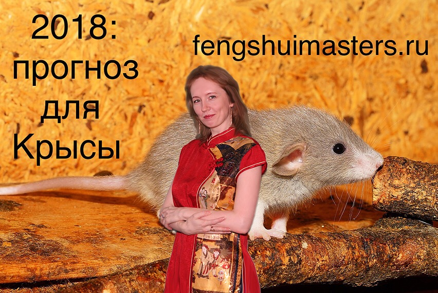 2018 Прогноз для Крысы - Fengshuimaster.ru
